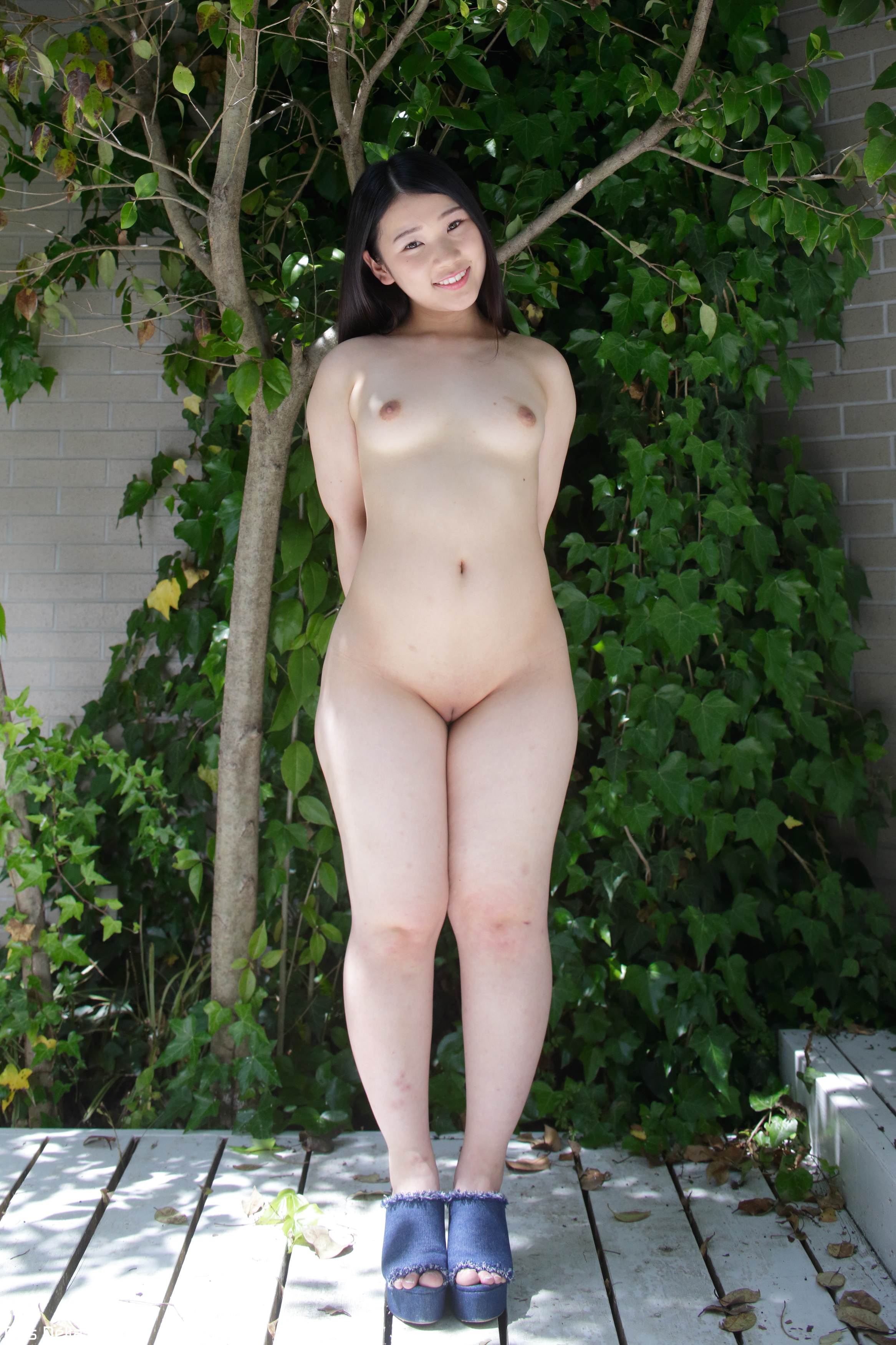 the very best of asian kitty bangie tmb